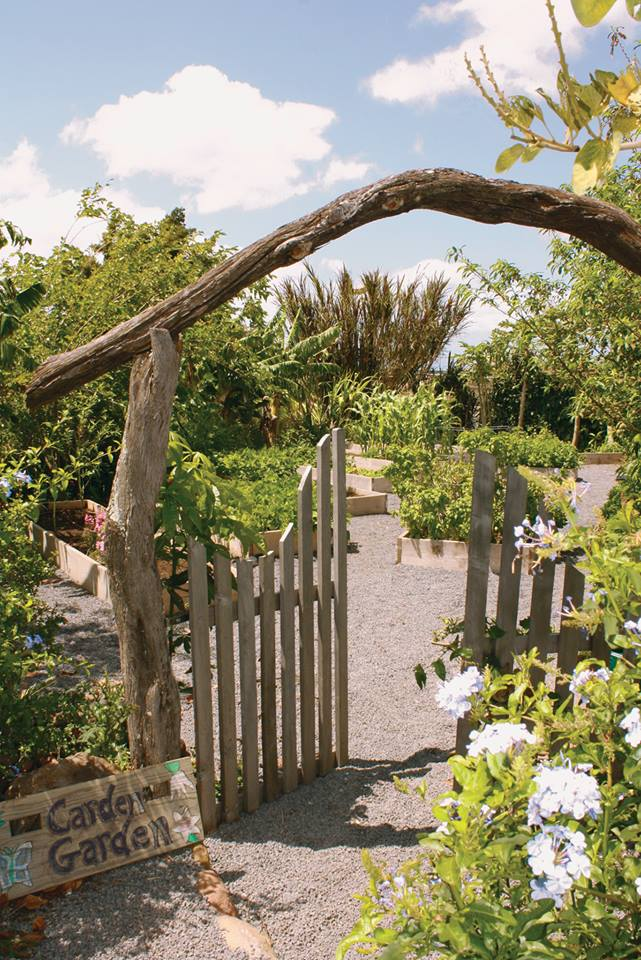 Educational Philosophy   Carden Academy   Carden Garden