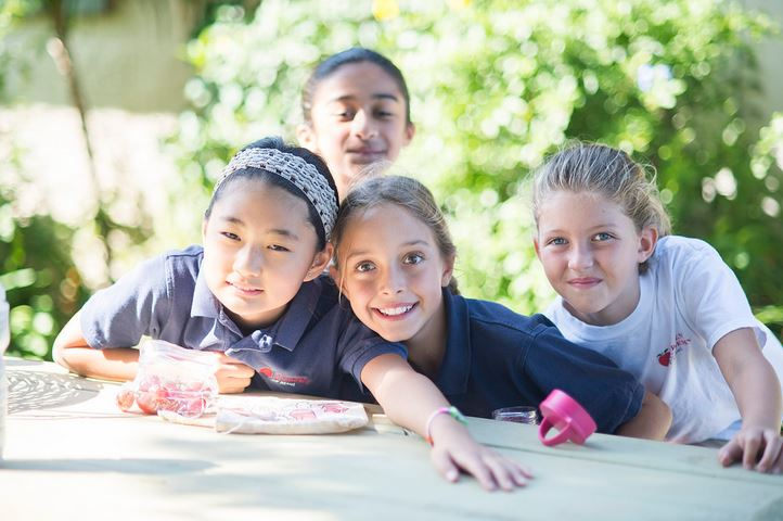 Maui School | Maui Private School | Maui Elementary School